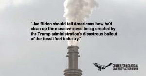 Biden Urged to Develop Plan to Undo Trump's Big Oil Bailout