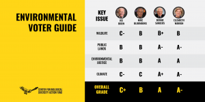 Bloomberg Leaps to Third in Updated Environmental Voter Guide