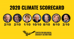 Sanders, Warren Beat Biden on Climate Scorecard for Presidential Candidates